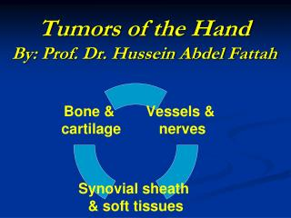 Tumors of the Hand By: Prof. Dr. Hussein Abdel Fattah