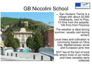 GB Niccolini School