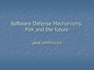 Software Defense Mechanisms:  PaX  and the future