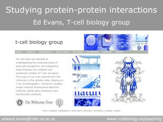 Studying protein-protein interactions Ed Evans, T-cell biology group