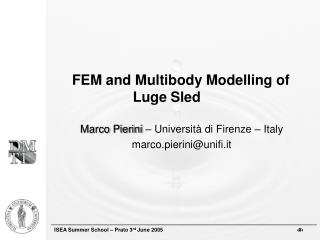 FEM and Multibody Modelling of Luge Sled