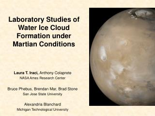 Laboratory Studies of Water Ice Cloud Formation under Martian Conditions