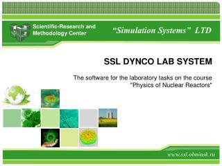 """Simulation Systems"" LTD"