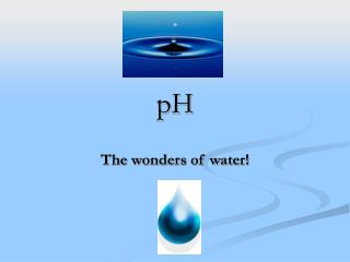The wonders of water!
