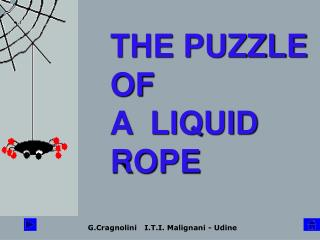 THE PUZZLE OF   A  LIQUID         ROPE