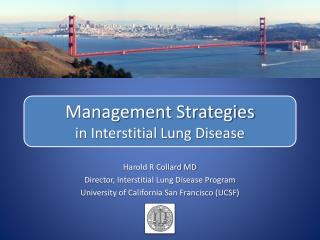 Management Strategies in Interstitial Lung Disease