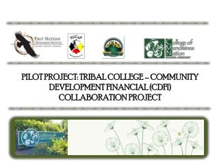 PILOT PROJECT: TRIBAL COLLEGE – COMMUNITY DEVELOPMENT FINANCIAL (CDFI) COLLABORATION PROJECT