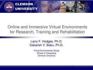 Online and Immersive Virtual Environments for Research, Training and Rehabilitation