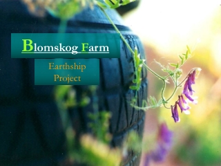 Blomskog Farm--Earthship project