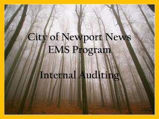 City of Newport News  EMS Program Internal Auditing