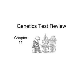 Genetics Test Review