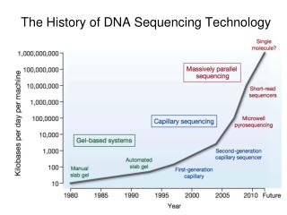 The History of DNA Sequencing Technology