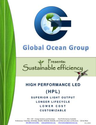 HIGH PERFORMANCE LED (HPL) SUPERIOR LIGHT OUTPUT LONGER LIFECYCLE LOWER COST CUSTOMIZABLE