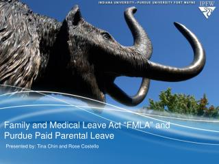 "Family and Medical Leave Act ""FMLA"" and Purdue Paid Parental Leave"