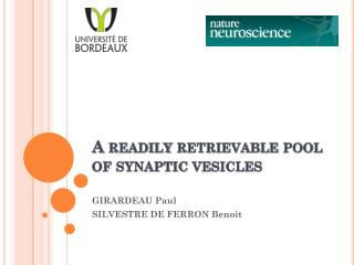 A  readily retrievable  pool of  synaptic vesicles
