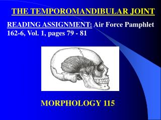THE TEMPOROMANDIBULAR JOINT READING ASSIGNMENT:  Air Force Pamphlet 162-6, Vol. 1, pages 79 - 81