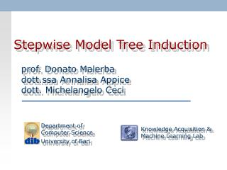 Stepwise Model Tree Induction