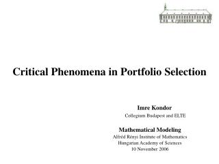 Critical Phenomena in Portfolio Selection