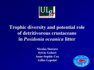 Trophic diversity and potential role of detritivorous crustaceans  in  Posidonia oceanica  litter