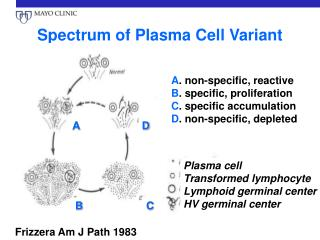 Spectrum of Plasma Cell Variant