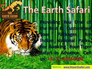 Tiger tour with the earth safari