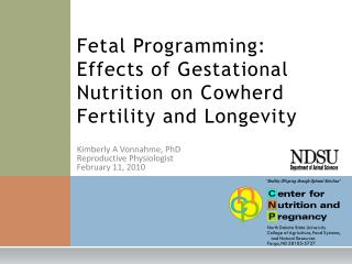 Fetal Programming: Effects of Gestational Nutrition on Cowherd Fertility and Longevity