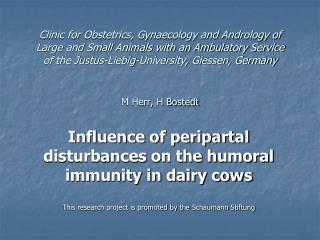 Influence of peripartal  disturbances on the humoral immunity in dairy cows This research project is promoted by the  Sc