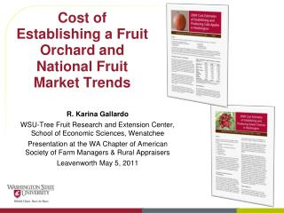 Cost of Establishing a Fruit Orchard and National Fruit Market Trends
