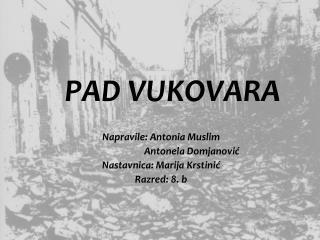 PAD VUKOVARA