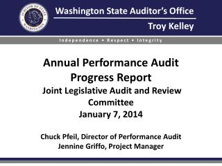 Performance audit background