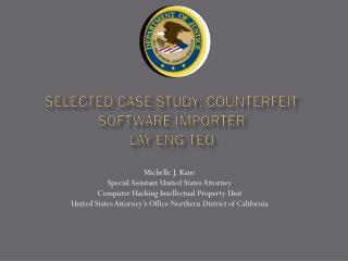 Selected Case Study: Counterfeit Software Importer Lay Eng  Teo