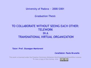 TO COLLABORATE WITHOUT SEEING EACH OTHER: TELEWORK IN A   TRANSNATIONAL  VIRTUAL ORGANIZATION