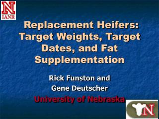 Replacement Heifers: Target Weights, Target Dates, and Fat Supplementation