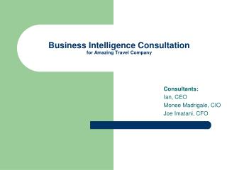 Business Intelligence Consultation for Amazing Travel Company