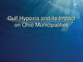 Gulf Hypoxia and its Impact on Ohio Municipalities
