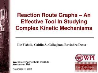 Reaction Route Graphs – An Effective Tool In Studying Complex Kinetic Mechanisms