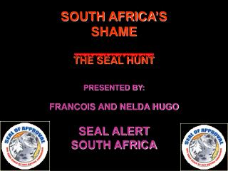 SOUTH AFRICA'S SHAME THE SEAL HUNT