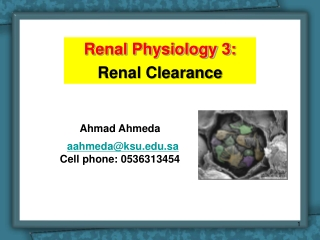 Principles of Renal Measurement 1  Measuring Renal Clearance and Transport