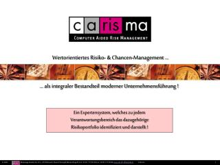 Wertorientiertes Risiko- & Chancen-Management ...