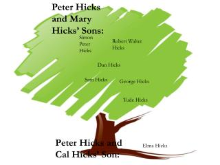 Peter Hicks and Mary Hicks' Sons: