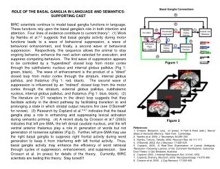 ROLE OF THE BASAL GANGLIA IN LANGUAGE AND SEMANTICS:   SUPPORTING CAST