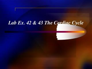 Lab Ex. 42 & 43 The Cardiac Cycle