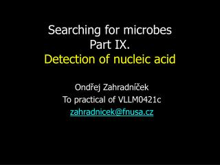 Searching for microbes Part IX. Detection of nucleic acid