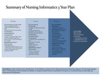 Summary of Nursing Informatics 3 Year Plan