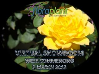 VIRTUAL SHOWROOM WEEK COMMENCING 3 MARCH 2013