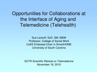 Opportunities for Collaborations at the Interface of Aging and Telemedicine (Telehealth)