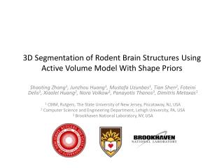 3D Segmentation of Rodent Brain Structures Using Active Volume Model With Shape Priors
