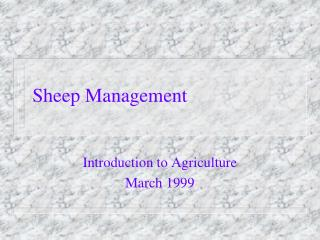 Sheep Management