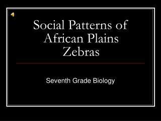 Social Patterns of African Plains Zebras