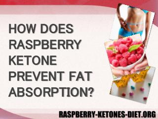 HOW DOES RASPBERRY KETONE PREVENT FAT ABSORPTION?